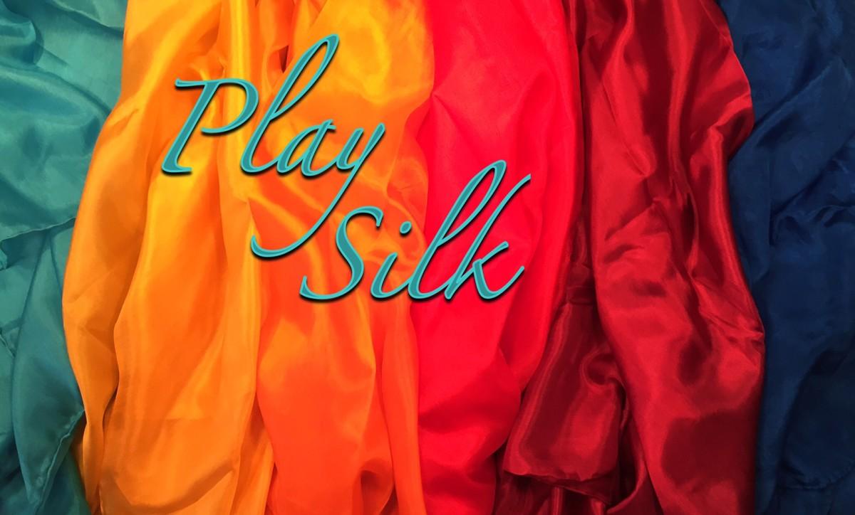 Play Silks | Homeschool Haul