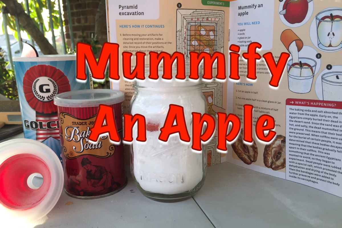 How to Mummify an Apple | Ancient Egypt