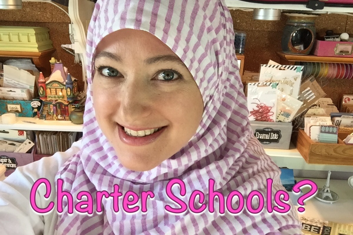 California Charter School Experience
