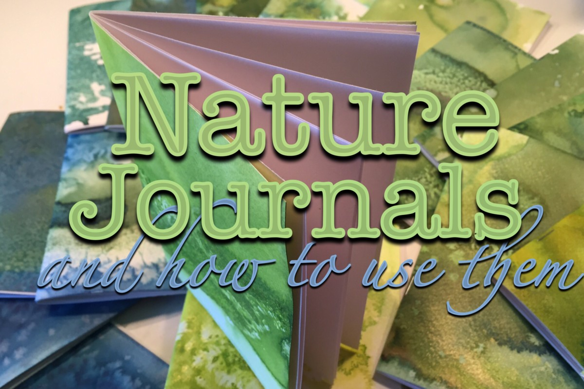 How To Use A Nature Journal | Nature Unit