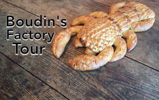 Boudin's Factory Tour San Francisco | Field Trip