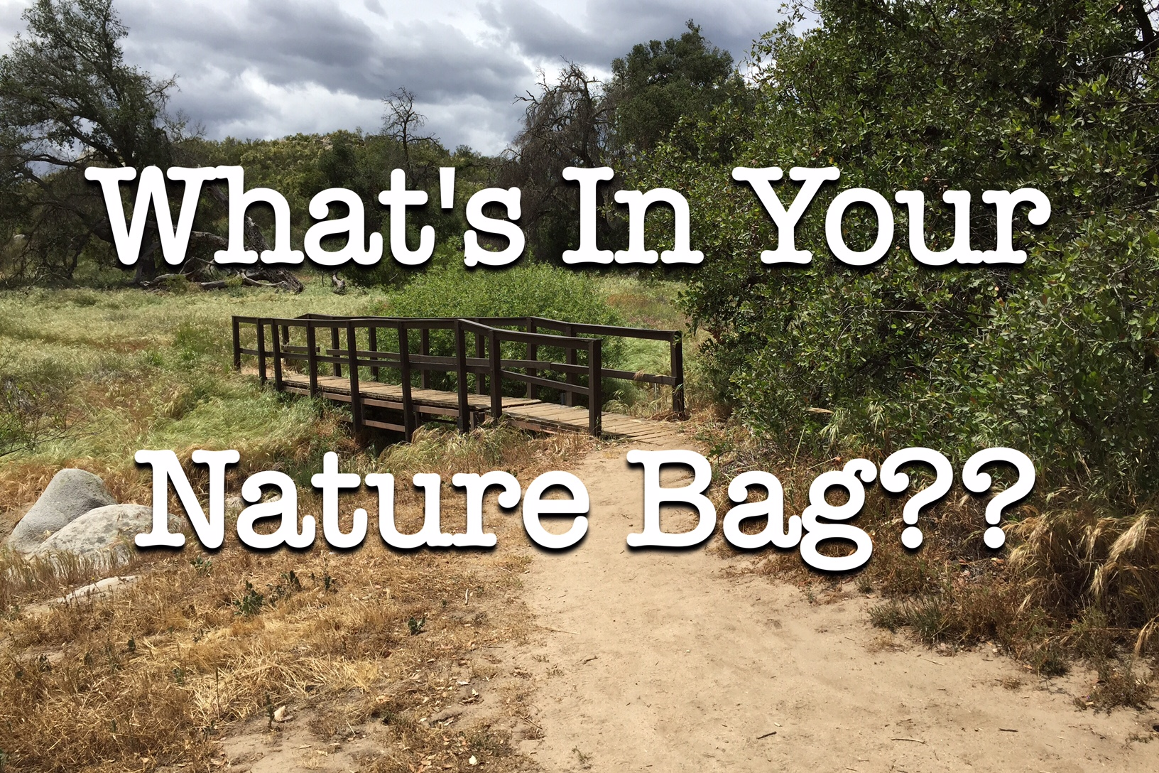 What's in a Nature Bag? | Nature Unit