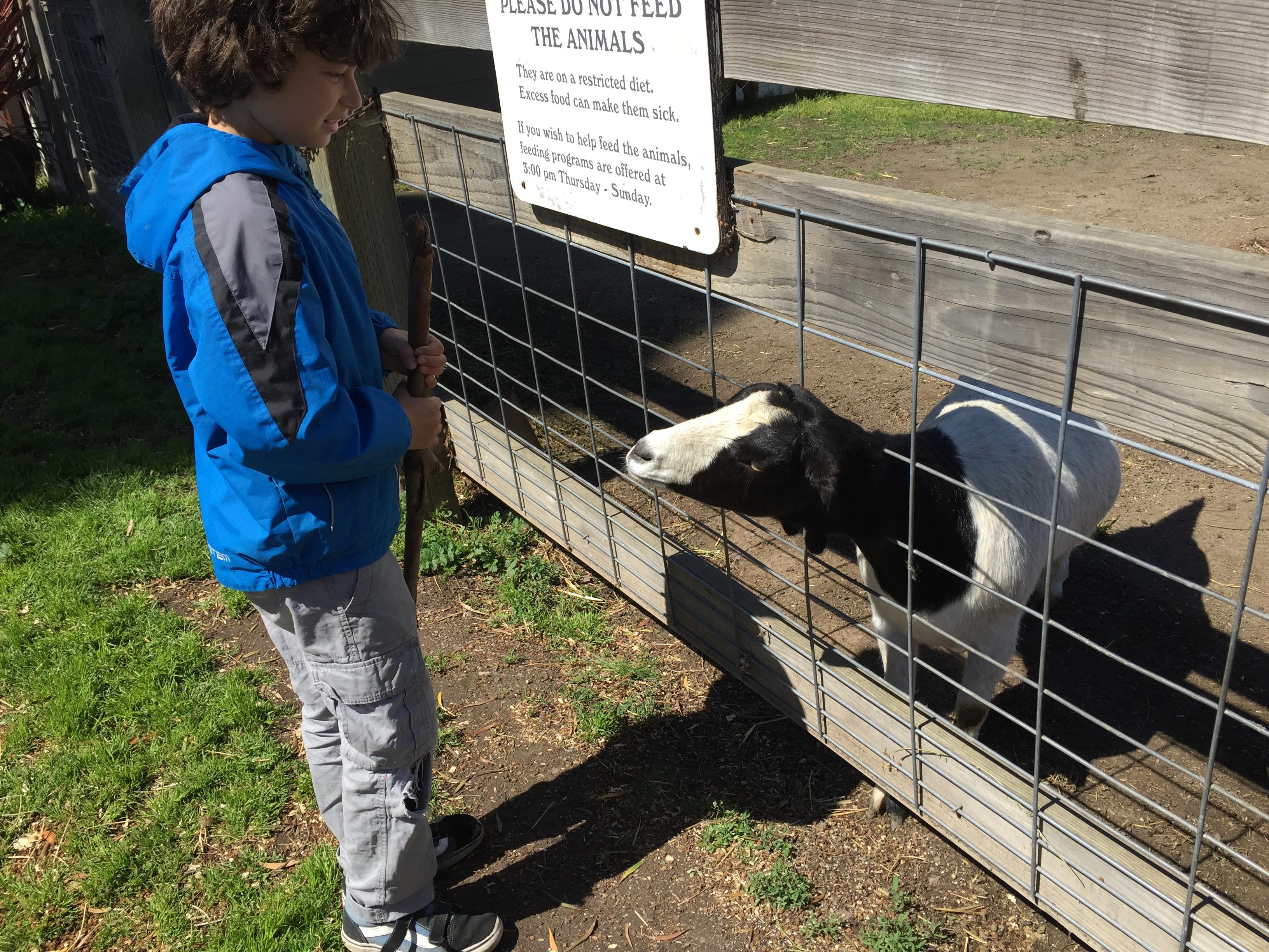 Ardenwood Farm | Field Trip