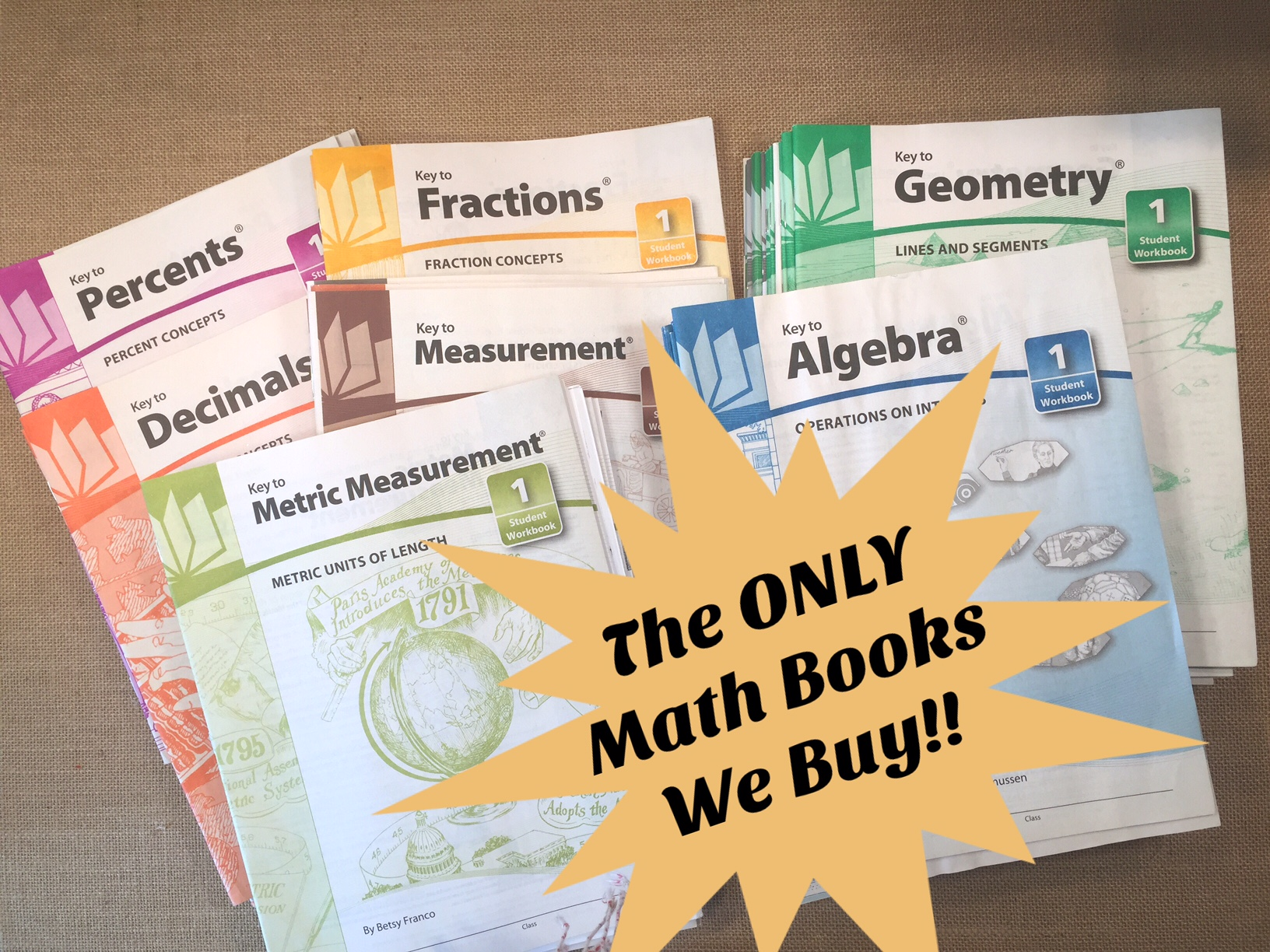 MATH CURRICULUM WORKBOOKS | MUST HAVE!!