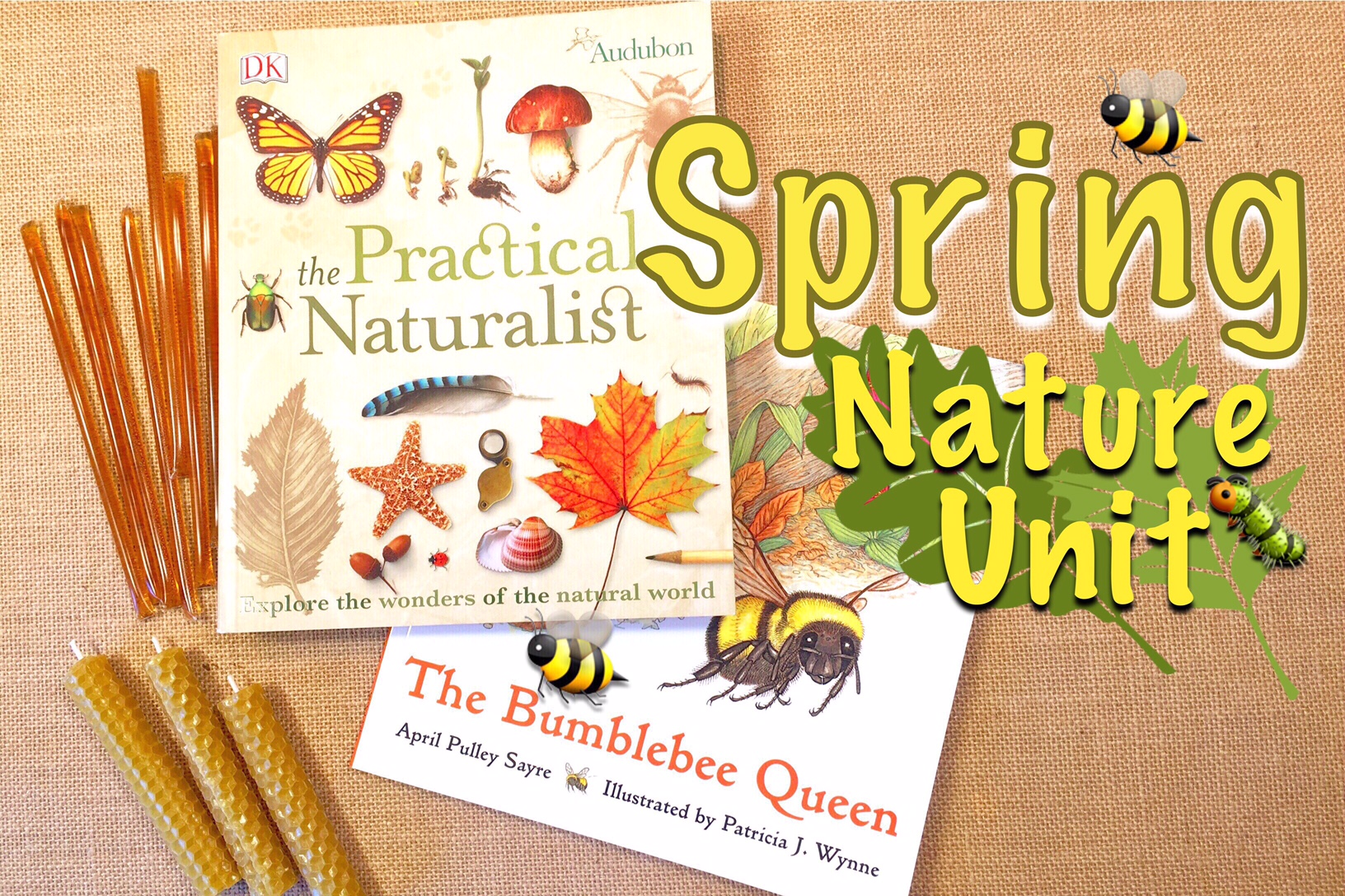 NATURE UNIT STUDY ON BEES & HONEY | HOMESCHOOL LESSON PLANNING | PLAN WITH ME