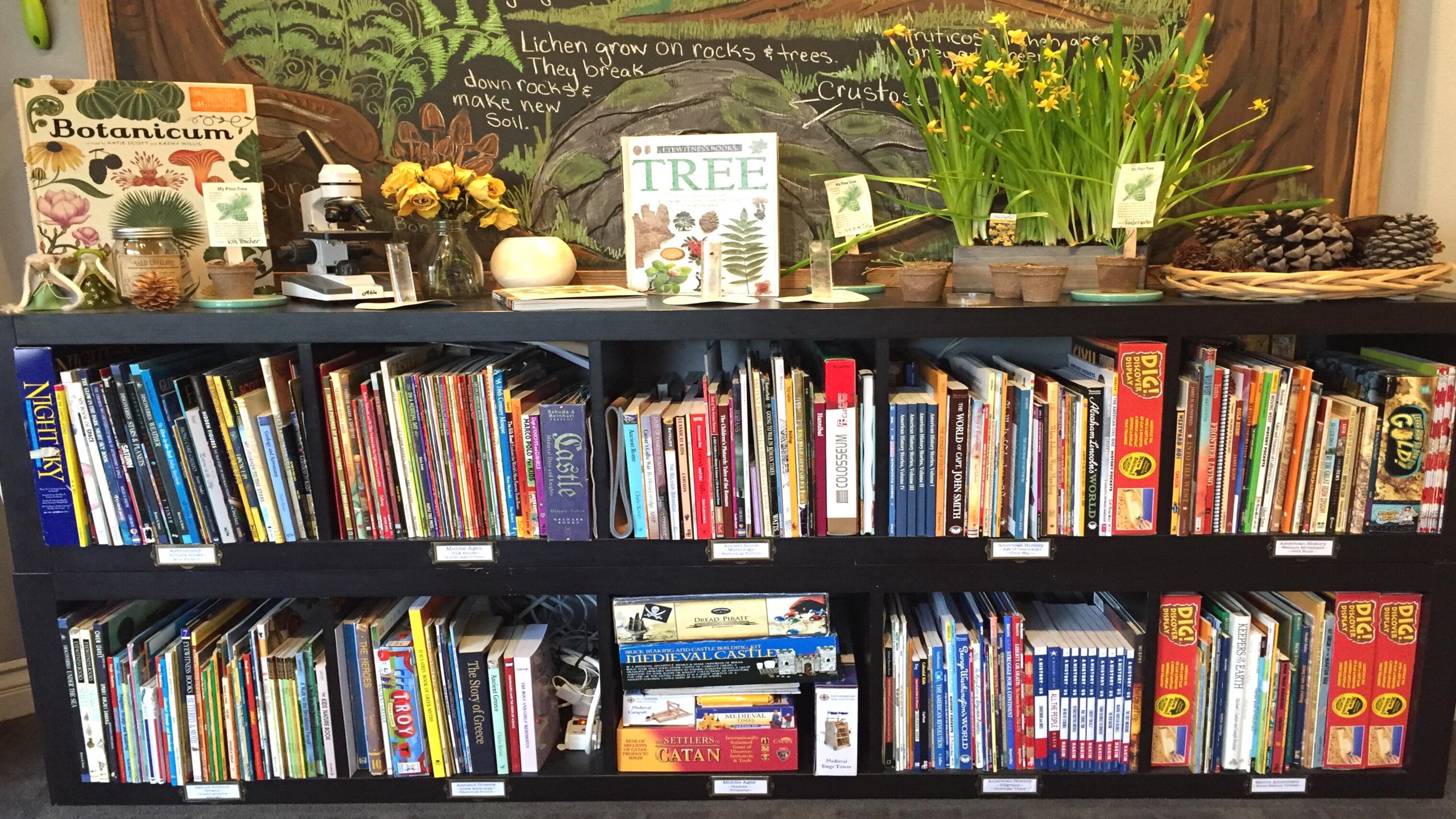 HOW I ORGANIZE OUR BOOKSHELVES | HOME LIBRARY TOUR