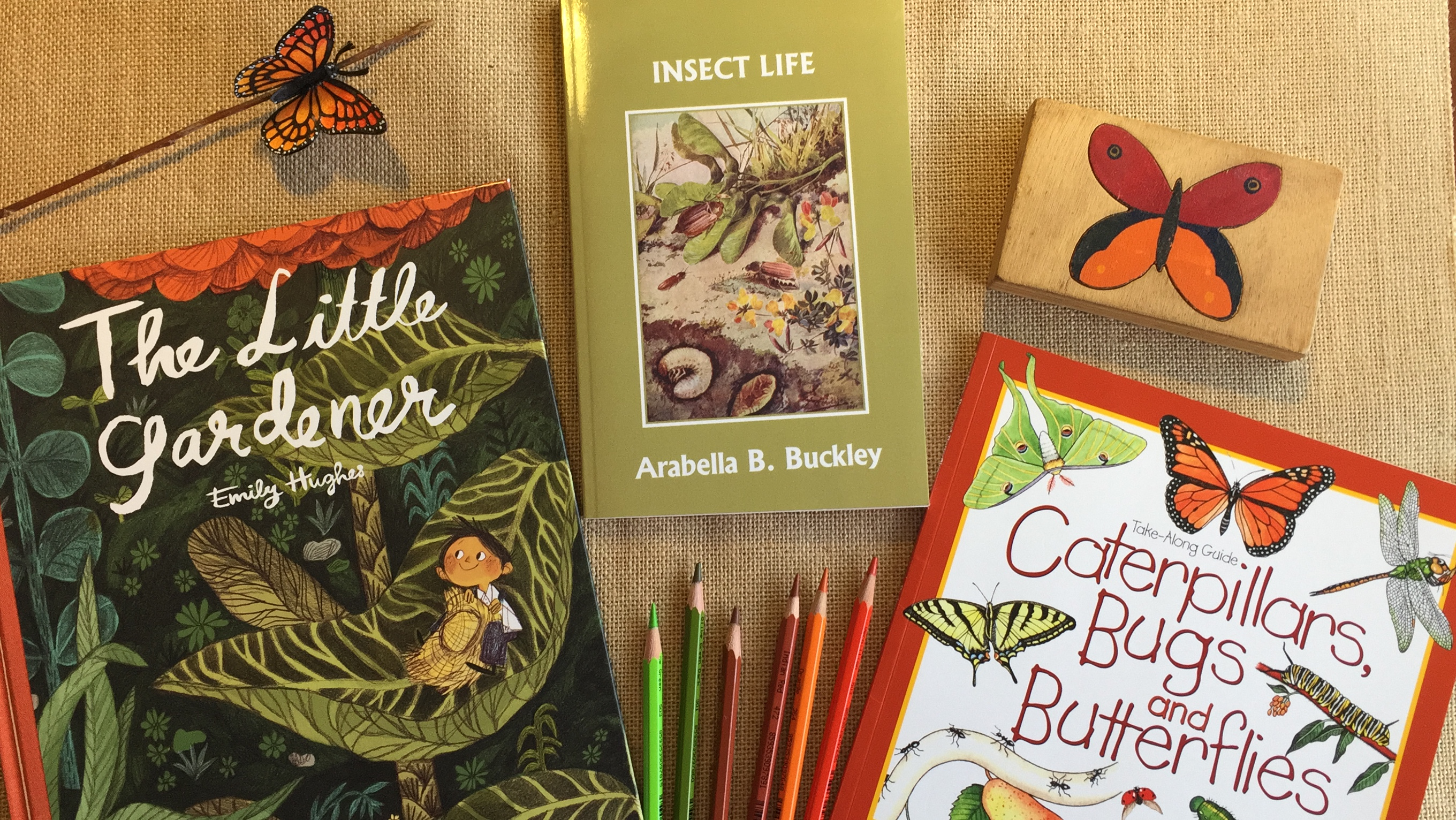 HOMESCHOOL UNIT STUDY | BUTTERFLIES & CATERPILLARS