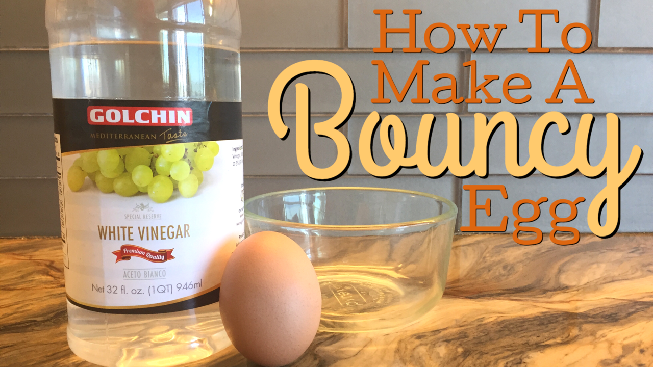 WHAT HAPPENS WHEN YOU PUT AN EGG IN VINEGAR