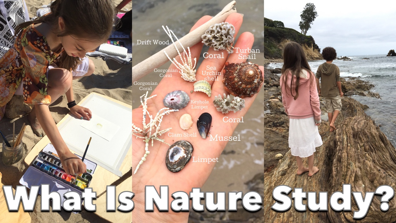 HOW TO DO A CHARLOTTE MASON INSPIRED NATURE STUDY