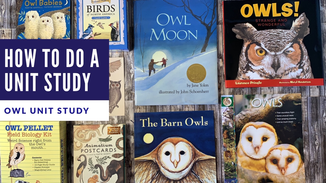 HOW TO DO AN OWL UNIT STUDY | RESOURCES & PROJECTS