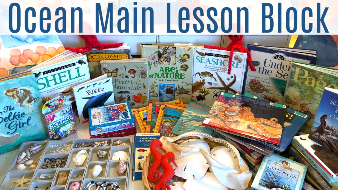 Ocean Main Lesson Block | A Complete Look at Resources and Projects for an Ocean Unit Study