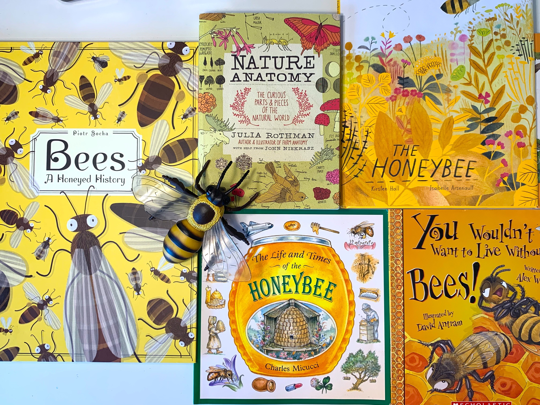 Bee Honey Unit Study Living Books Curriculum Resources